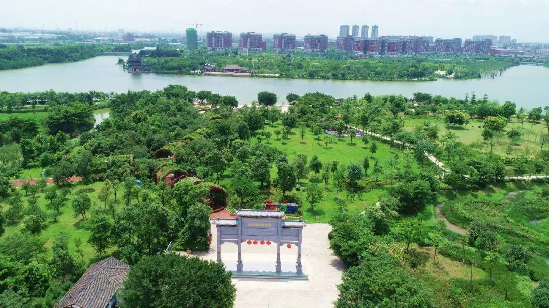 """华阳湖水质恢复到三至四类 他们是""""最美河涌""""的幕后英雄"""
