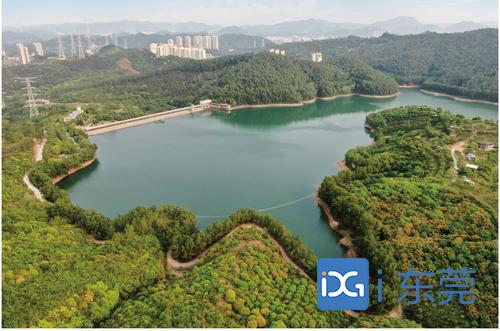 东莞明年将至少建成14个省森林小镇