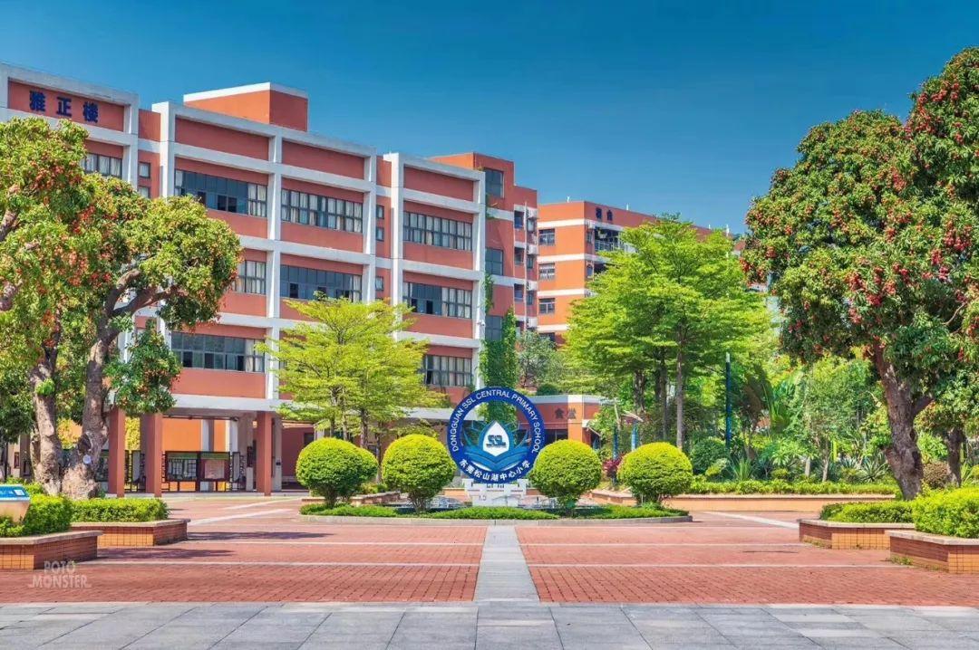 """十年里树人 松山湖这所学校用""""全人课程""""点燃学生的生命亮度"""