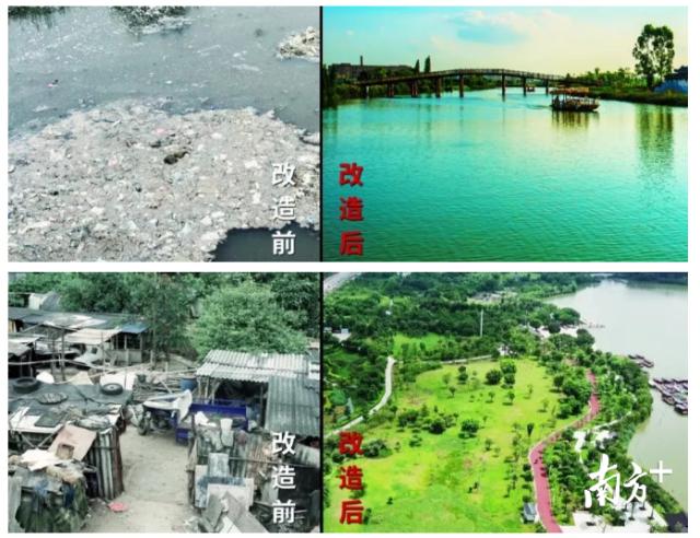 优秀!华阳湖湿地公园喜获省级荣誉称号