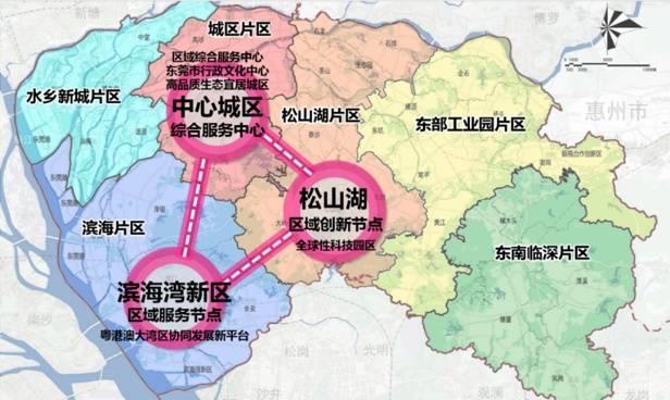 看!2019东莞滨海湾新区这一年