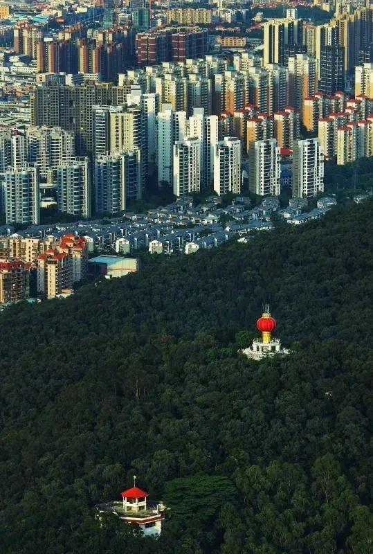 东莞城区总人口全国第9!人数是……