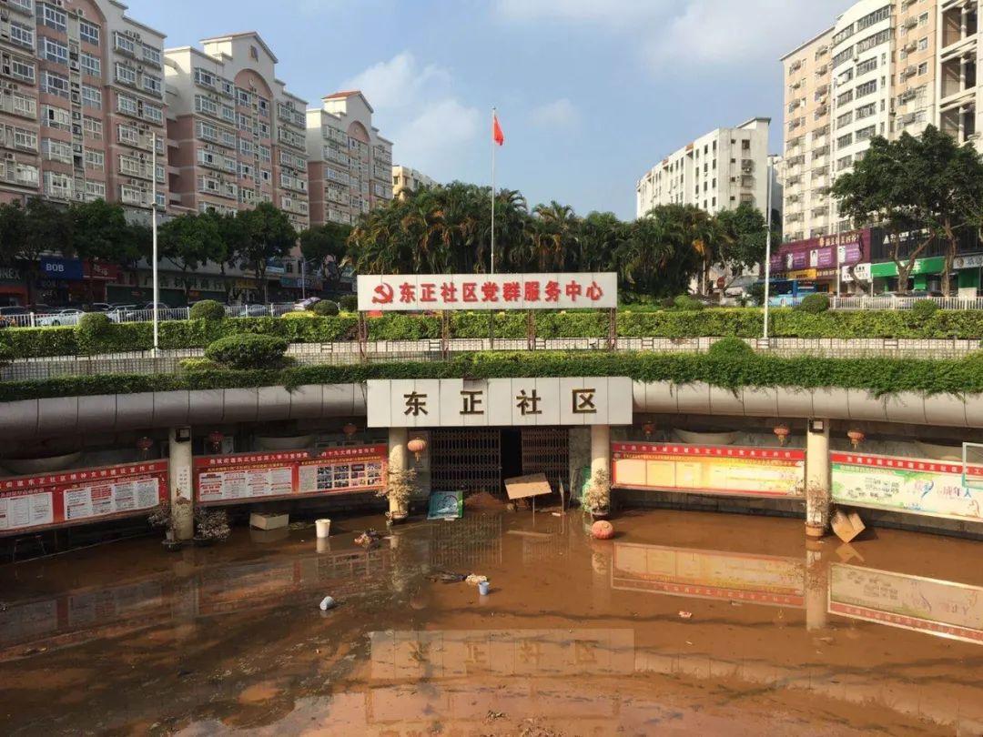 莞城积极开展暴雨后排水和清洁工作