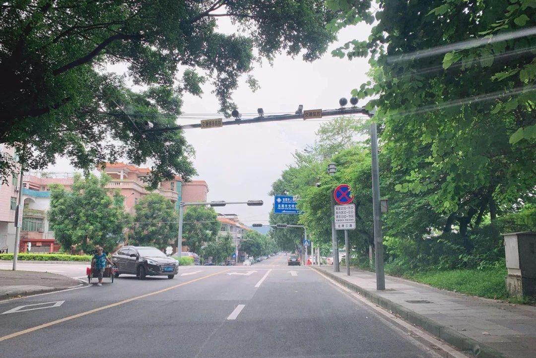 小心被罚!东莞市区再增13处交通违法抓拍点,在这里!